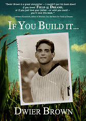 + If you build it book cover