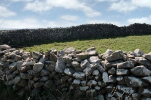 + Irish stone wall June 14 Muse 4988337_s