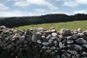 + Irish stone wall June 14 Muse 4988337_s