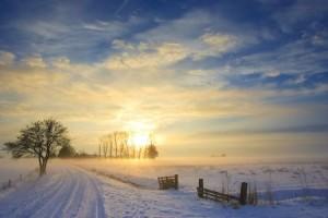+ winter sunrise field Jan 12 blog 5918767_s