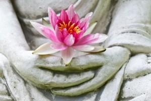 + Buddha holding lotus CASL Jan 15 17957796_s