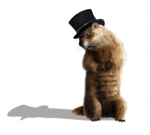 + Groundhog Blog Feb 16 36145892_s