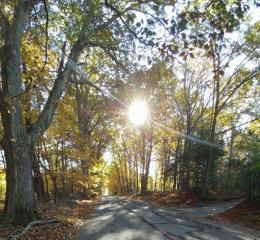 Autumnal Equinox Ritual @ Theosophical Society Center for Spiritual Studies | Arlington | Massachusetts | United States