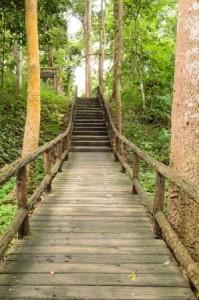 + Wooden bridge May 15 Blog 16415475_s